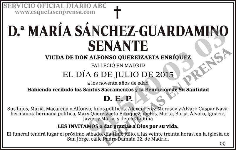 María Sánchez-Guardamino Senante